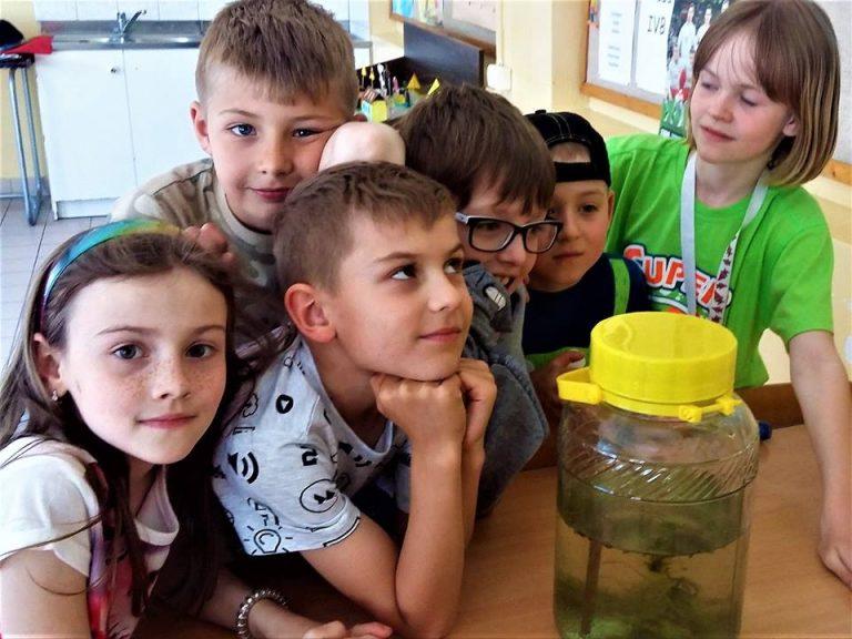 Eksperymenty Młodych Naukowców w Jadwisinie